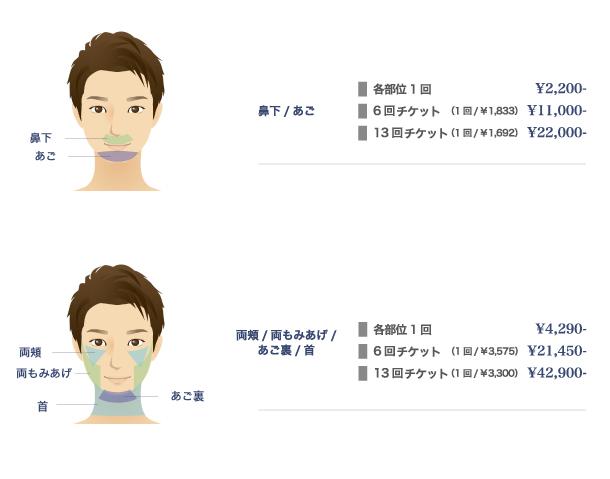 Face (顔の部位)